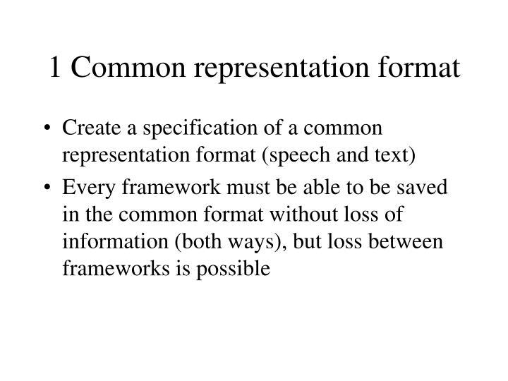 1 common representation format
