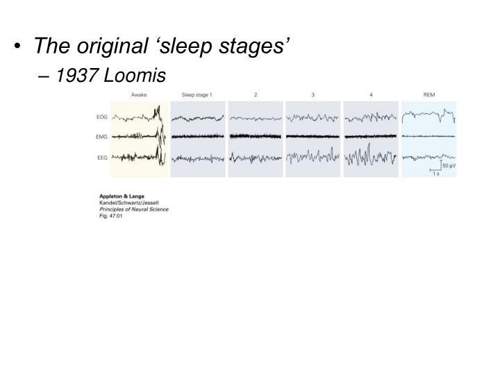 The original 'sleep stages'