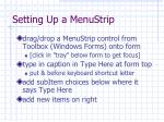 setting up a menustrip