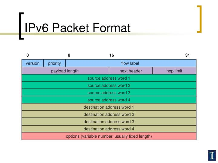 IPv6 Packet Format