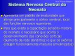 sistema nervoso central do neonato