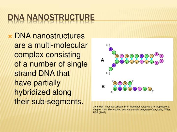 DNA nanostructures are a multi-molecular complex consisting of a number of single strand DNA that have partially hybridized along their sub-segments.