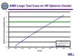 amr large test case on hp opteron cluster