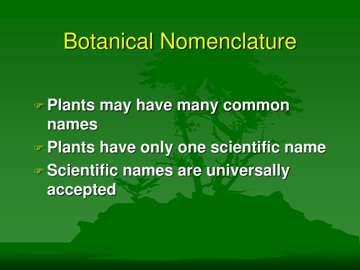 PPT - Botanical Nomenclature PowerPoint Presentation - ID:1447521