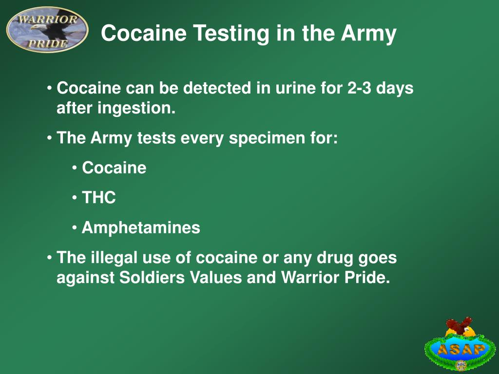 Cocaine Testing in the Army