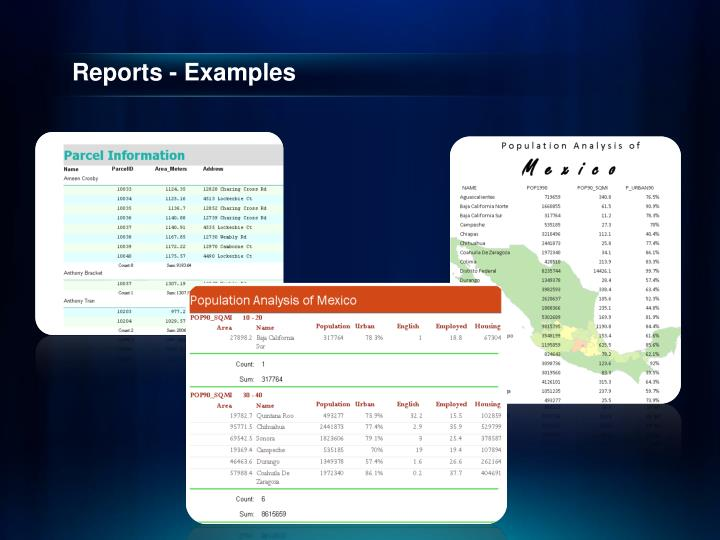 Reports - Examples
