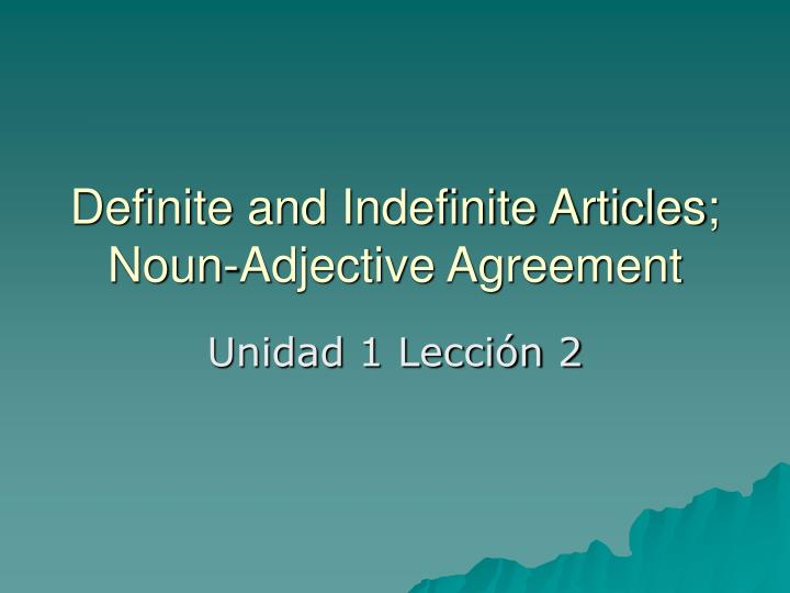 definite and indefinite articles noun adjective agreement n.