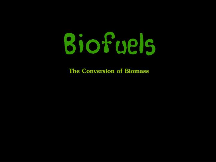 the conversion of biomass n.