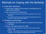 methods for coping with the bullwhip1