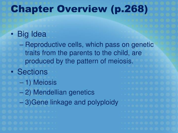 Chapter overview p 268