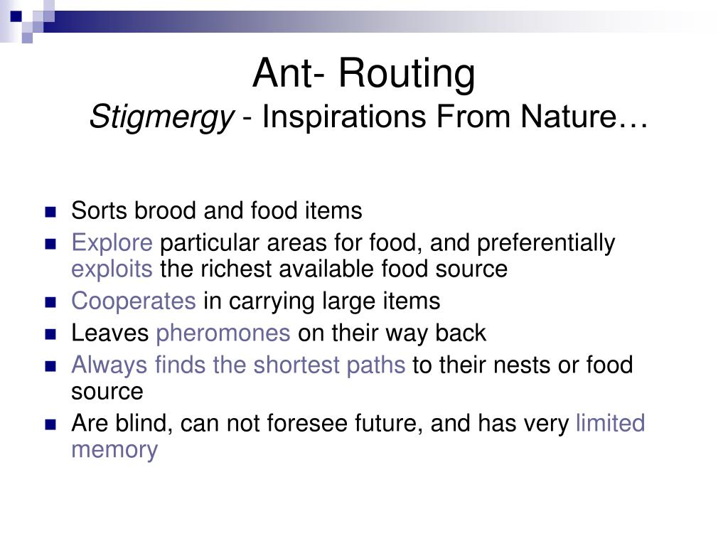 Ant- Routing