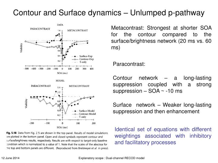 Contour and Surface dynamics – Unlumped p-pathway