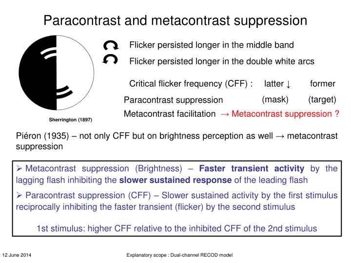 Paracontrast and metacontrast suppression