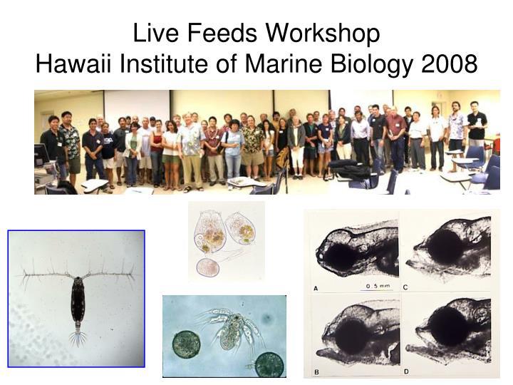 Live Feeds Workshop