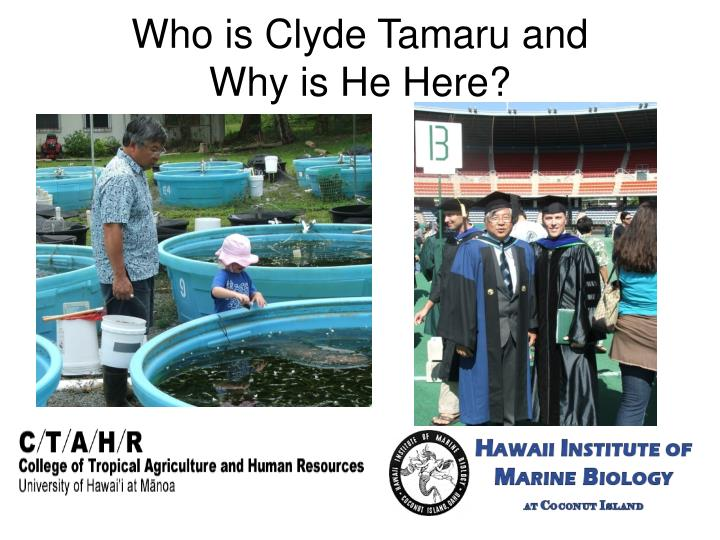 Who is Clyde Tamaru and