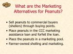 what are the marketing alternatives for peanuts