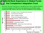world bank experience in global funds that complement adaptation fund