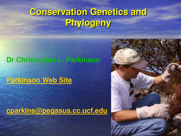 conservation genetics and phylogeny n.
