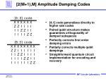 2 m 1 m amplitude damping codes