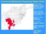 community mobilisation supporting option three