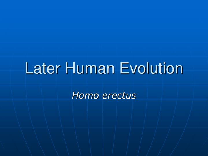 later human evolution n.