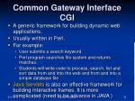common gateway interface cgi