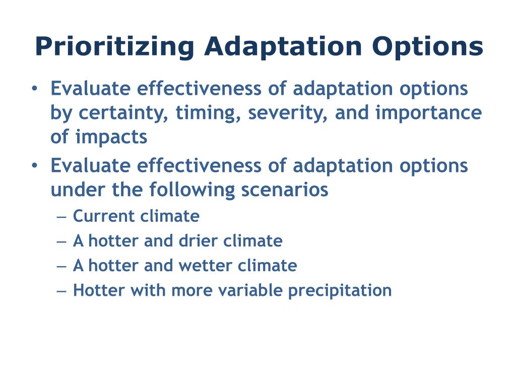 Prioritizing Adaptation Options