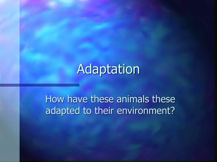 adaptation n.