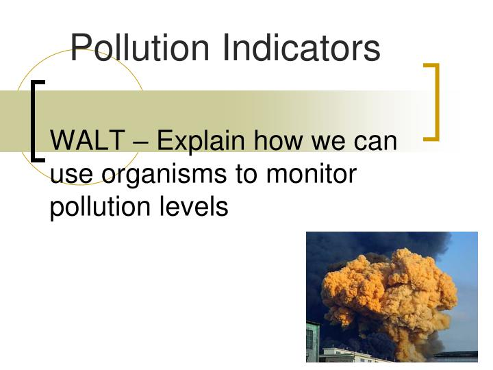 walt explain how we can use organisms to monitor pollution levels n.