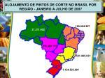alojamento de pintos de corte no brasil por regi o janeiro a julho de 2007