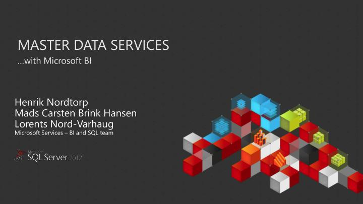 master data services n.