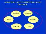 addiction affects the following domains
