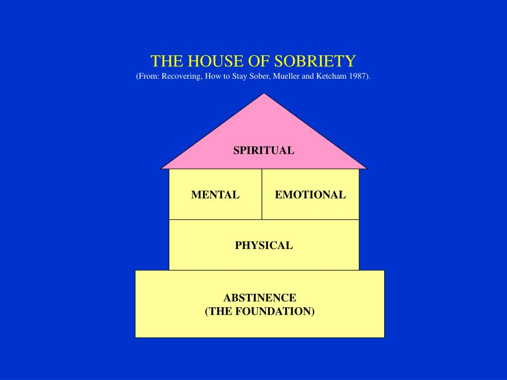 THE HOUSE OF SOBRIETY