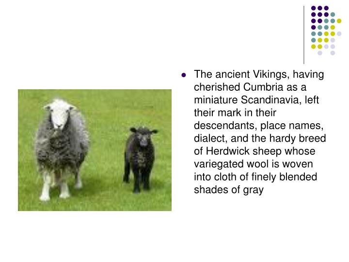 The ancient Vikings, having cherished Cumbria as a miniature Scandinavia, left their mark in their descendants, place names, dialect, and the hardy breed of Herdwick sheep whose variegated wool is woven into cloth of finely blended shades of gray