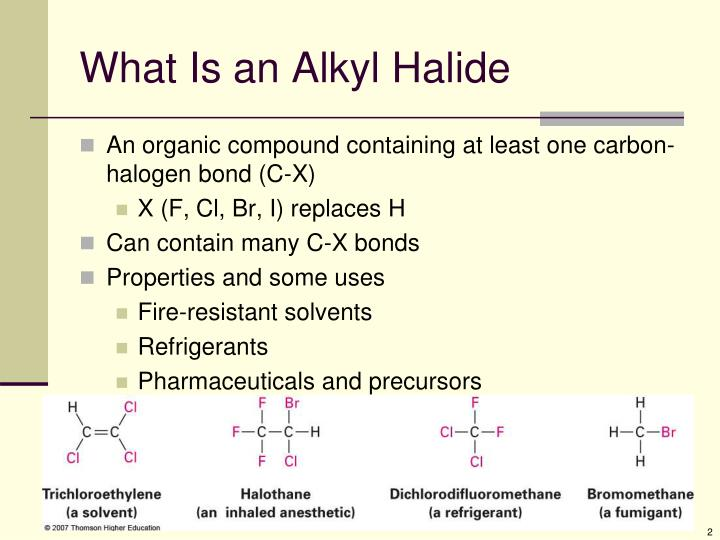 What is an alkyl halide