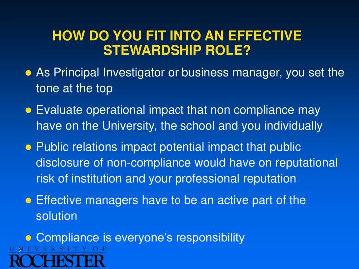 How do you fit into an effective stewardship role