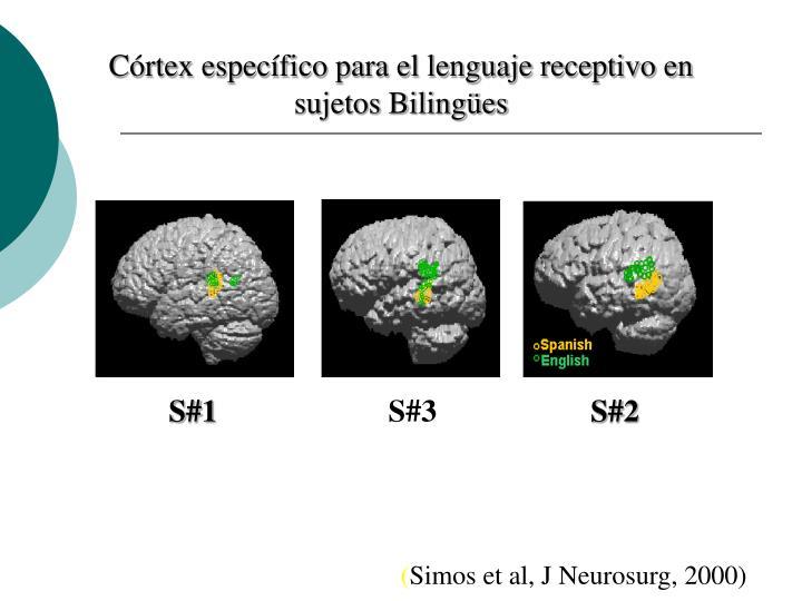 Córtex específico para el lenguaje receptivo en sujetos Bilingües