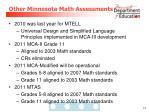 other minnesota math assessments