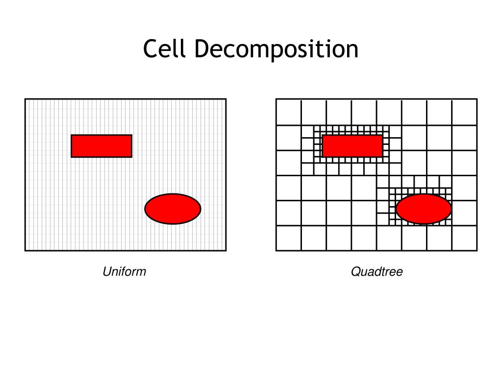 Cell Decomposition