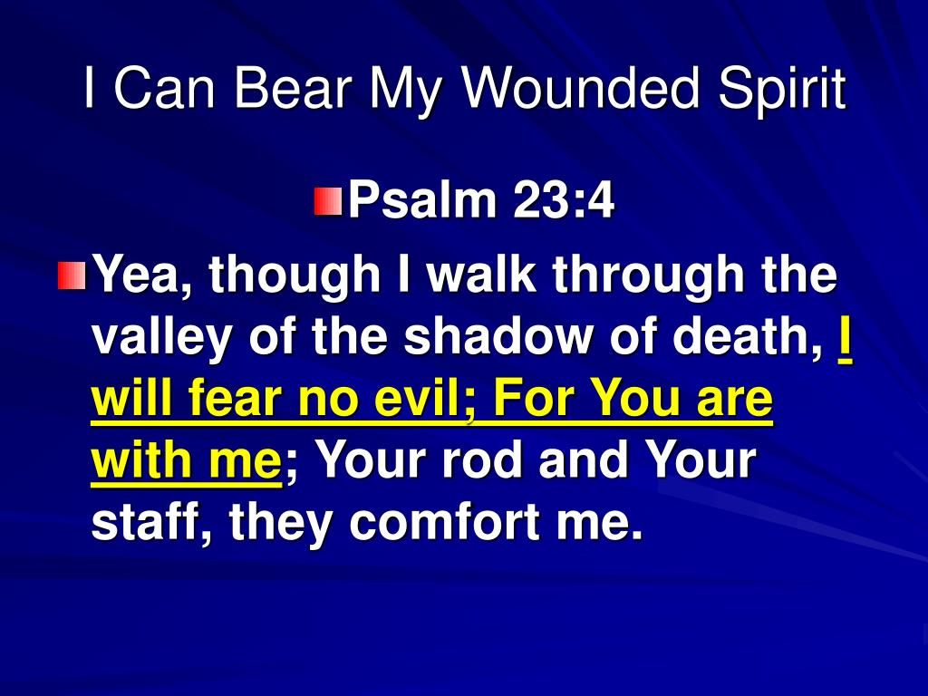 I Can Bear My Wounded Spirit