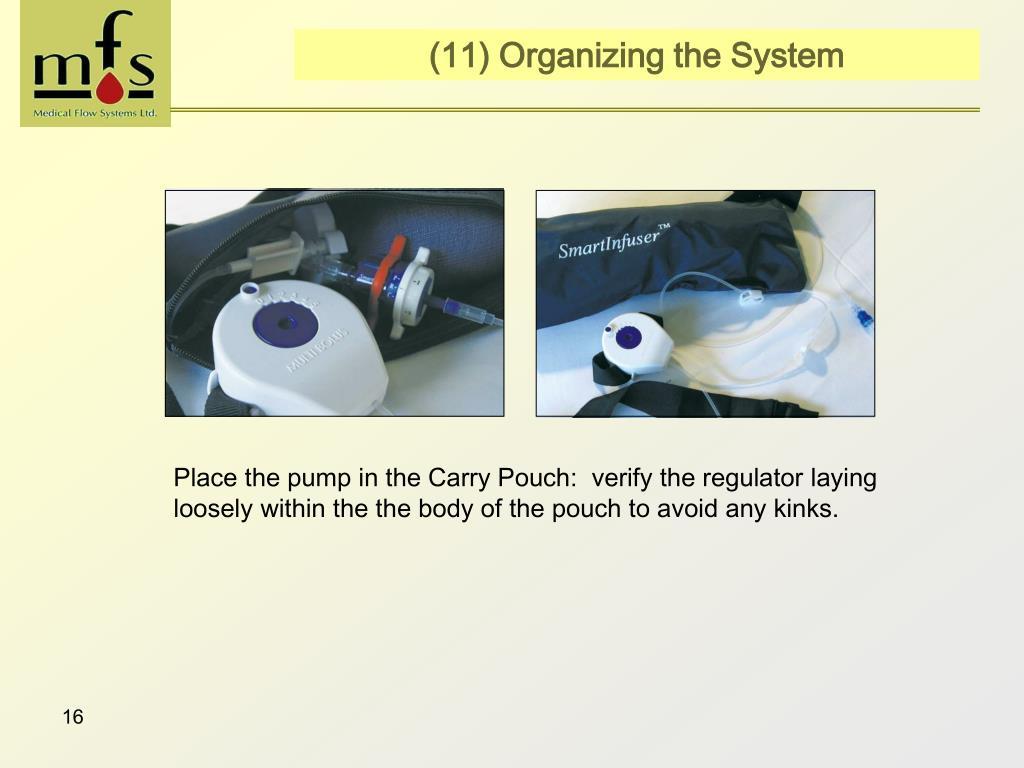(11) Organizing the System