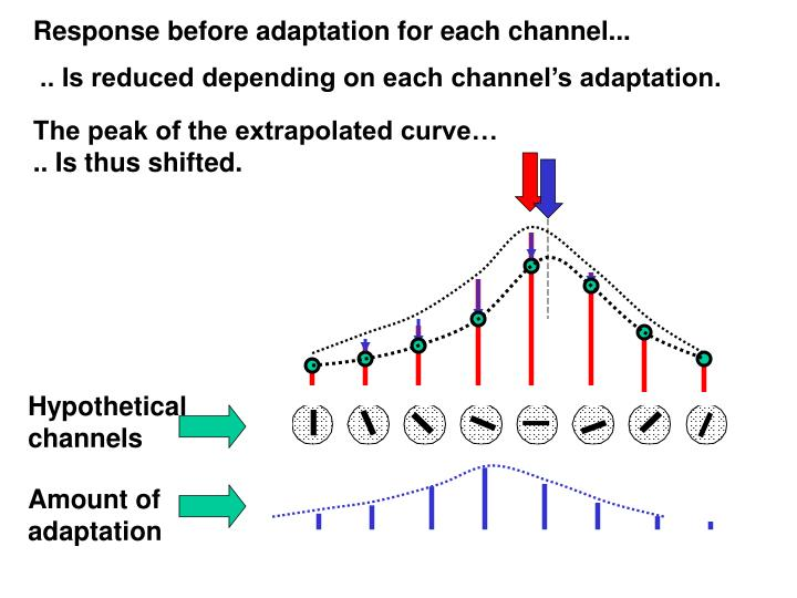 Response before adaptation for each channel...