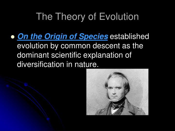 theory of evolution the evolution of hox Hank gets real with us in a discussion of evolution - it's a thing, not a debate gene distribution changes over time, across successive generations, to give rise to diversity at every level of.