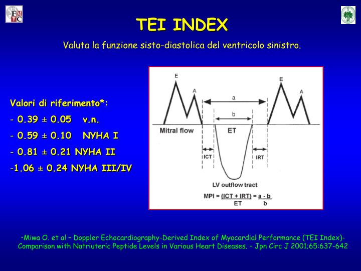 TEI INDEX