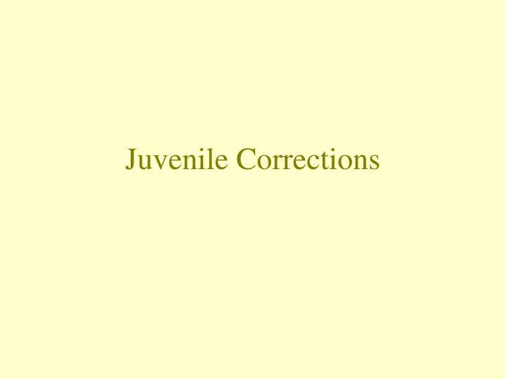 juvenile corrections n.