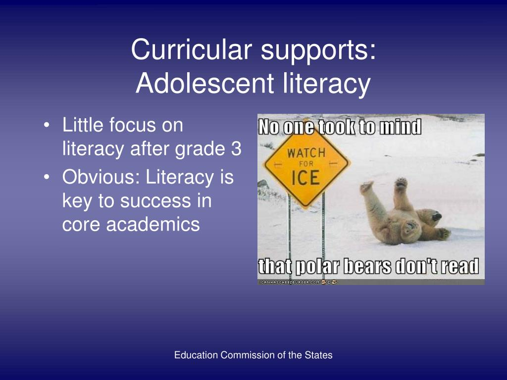Curricular supports:
