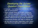 developing the survey question organization19