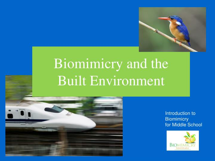 Biomimicry and the built environment