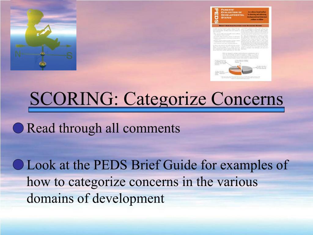 SCORING: Categorize Concerns