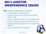 sec s auditor independence issues